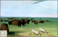 Painting of Buffalo